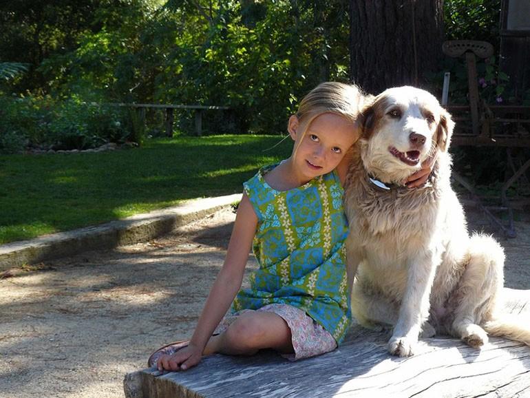 Лечение собаками